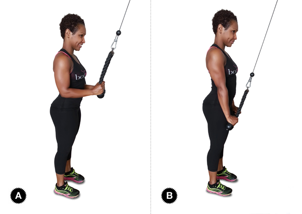 Rope-Tricep-Push-Downs